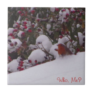 Robin Redbreast in the Snow Small Square Tile