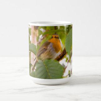 """Robin Redbreast in Wild Cherry Tree"" Coffee Mugs"
