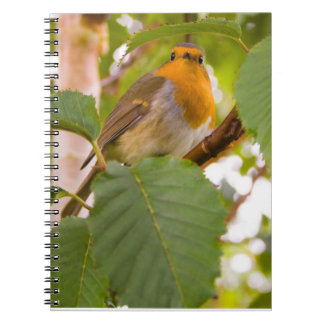 """Robin Redbreast in Wild Cherry Tree"" Notebooks"