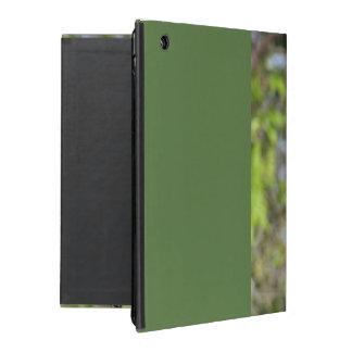 Robin Redbreast iPad Covers