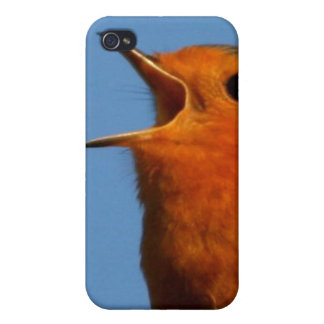 Robin Redbreast Covers For iPhone 4