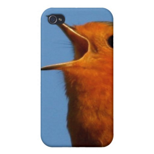 Robin Redbreast Cases For iPhone 4