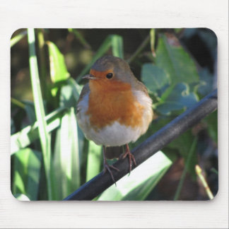 Robin Redbreast Mouse Mat