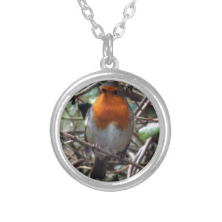Robin redbreast round pendant necklace