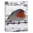 Robin Redbreast Notebook