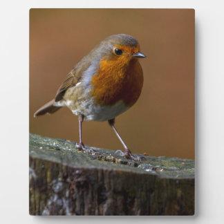 Robin Redbreast Plaque