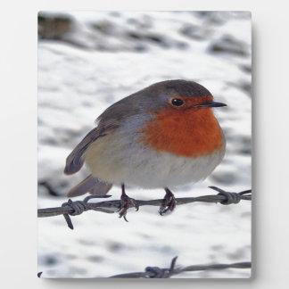 Robin Redbreast Plaques