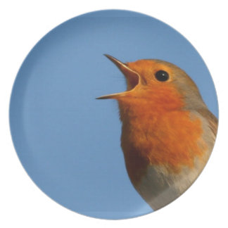 Robin Redbreast Party Plate