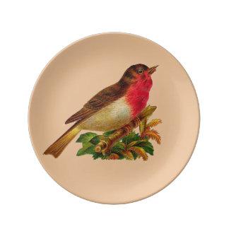 Robin Redbreast Porcelain Plate