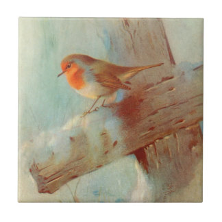 Robin redbreast small square tile