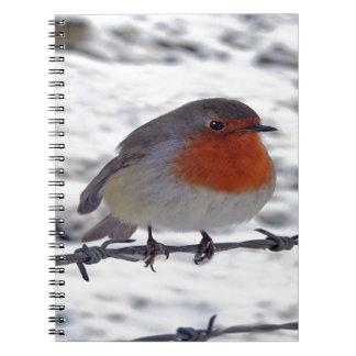 Robin Redbreast Spiral Notebook