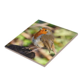Robin Redbreast Tile
