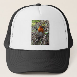 Robin redbreast trucker hat
