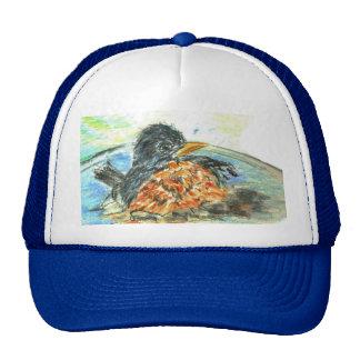 Robin s Bird Bath Trucker Hat