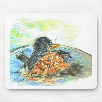 Robin s Bird Bath Mouse Pad
