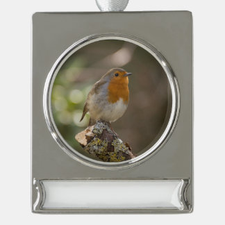Robin Silver Plated Banner Ornament