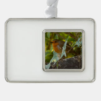 Robin Silver Plated Framed Ornament