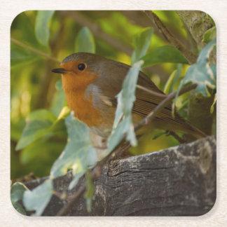 Robin Square Paper Coaster