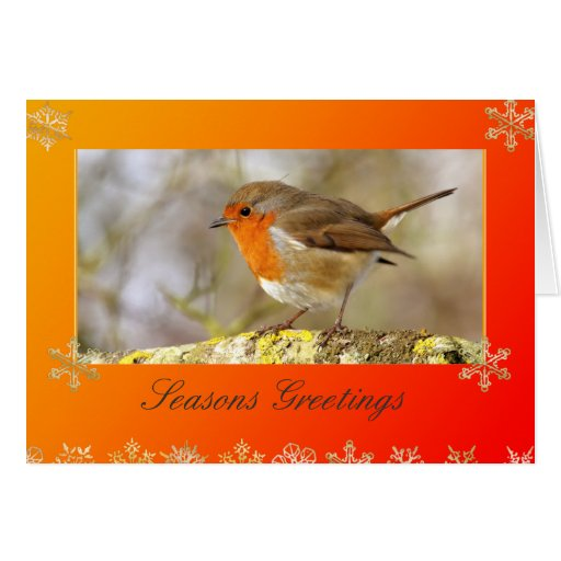 Robin Template Christmas Card