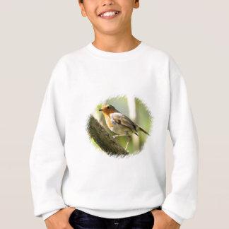 Robin Wild-life Bird Sweatshirt