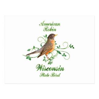 Robin Wisconsin State Bird Postcard