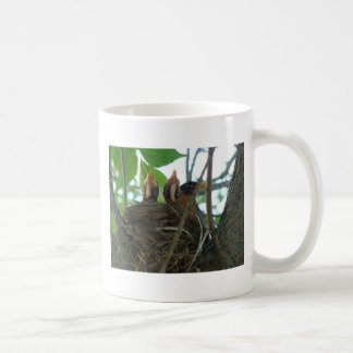 Robin With Babies Coffee Mug