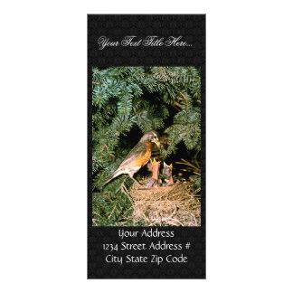 Robin with Chicks Rack Card