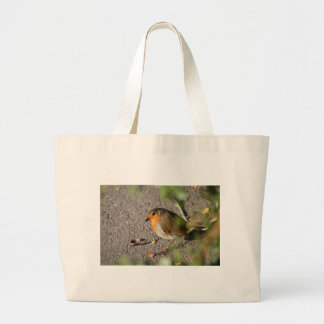 Robin with his worm bag