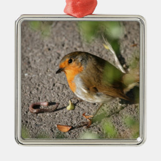 Robin with his worm christmas ornament