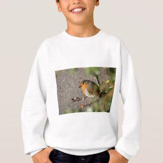 Robin with his worm sweatshirt
