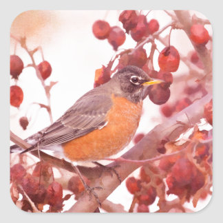 Robin With Red Berries Square Sticker