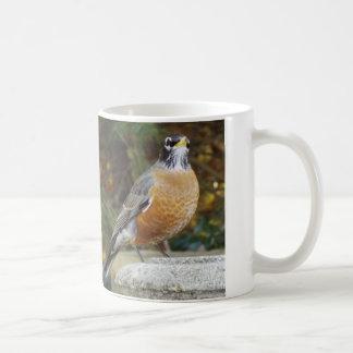 Robins Bath mug