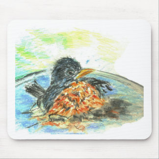 Robin's Bird Bath Mouse Pad