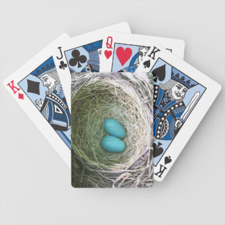 Robin's Eggs Bicycle Playing Cards