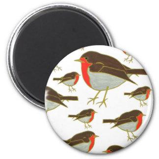 Robins Fridge Magnet