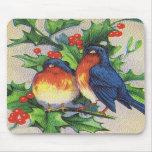 Robins & Holly Christmas