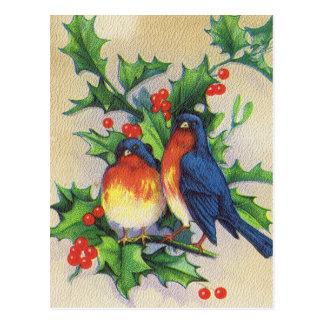Robins Holly Christmas Postcards