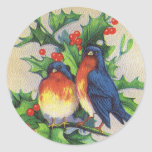 Robins & Holly Christmas Round Stickers