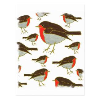 Robins Postcard
