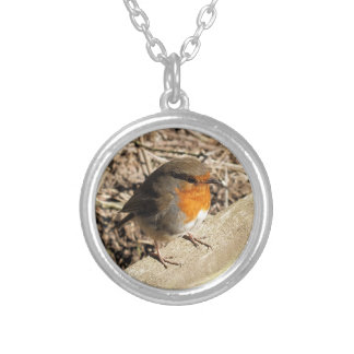 ROBINS SILVER PLATED NECKLACE