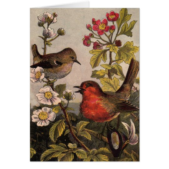 Robins Vintage Birds Card