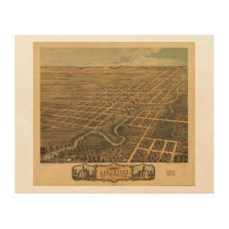 Rochester Olmsted County Minnesota (1869) Wood Canvases
