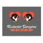 Rochester Peregrine Soap Opera Post Cards