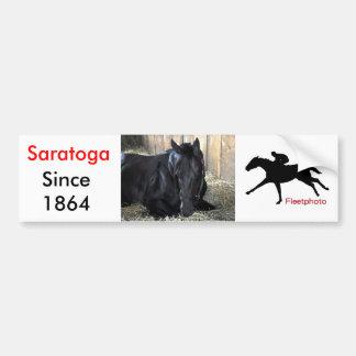 Rock Fall by Speightstown - Renda Bumper Sticker