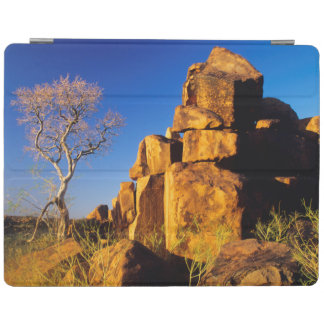 Rock Formation And Tree, Giant's Playground iPad Cover