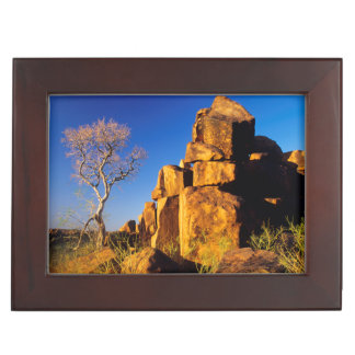 Rock Formation And Tree, Giant's Playground Keepsake Box