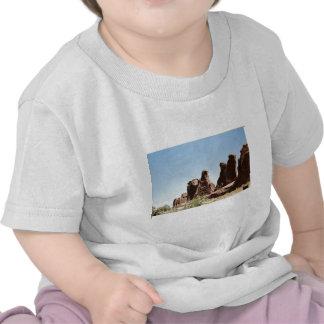 Rock Formations in Utah T Shirt