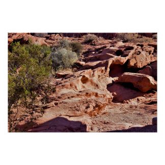 Rock Formations with Plants Valley of Fire Poster