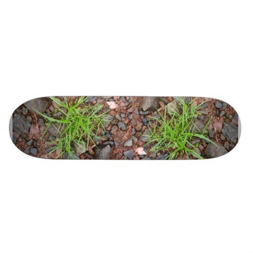 Rock Grass Skateboard