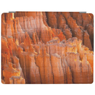 Rock Hoodoos in Morning Light iPad Cover